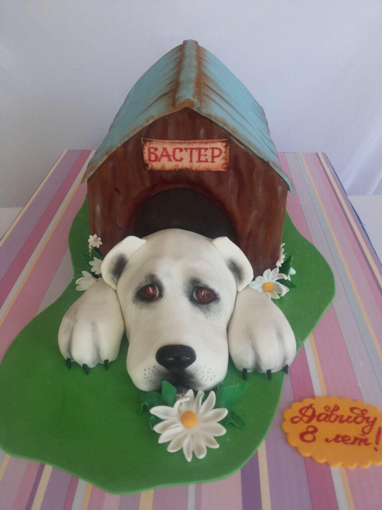 Праздничный торт с любимцем семьи